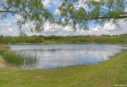 Lake Ridge Neighborhood Pond - Cedar Hill, TX