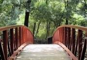 nature-trails