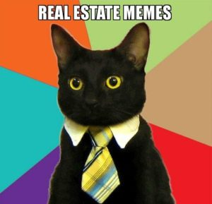 real-estate-memes - business cat